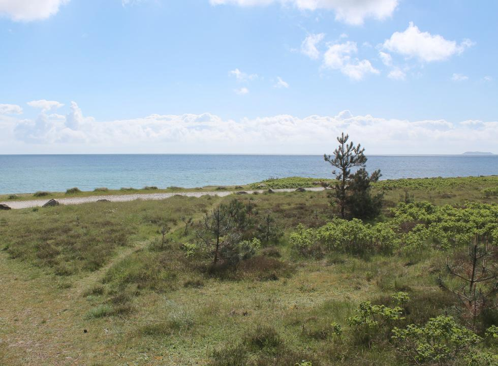 View of the nature and the sea in Boeslum