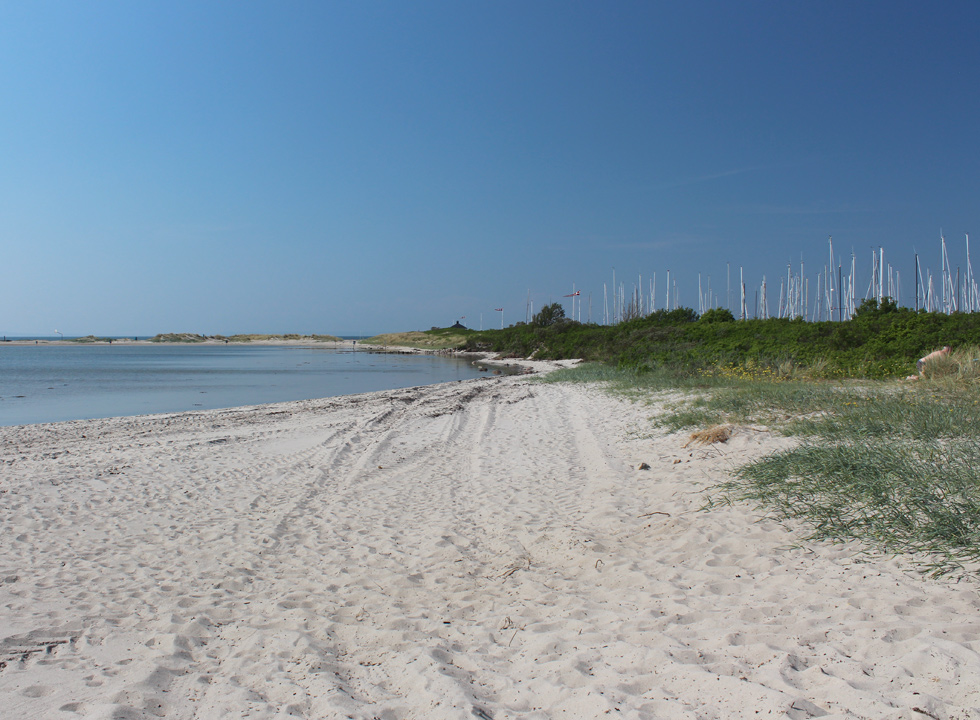 Lovely sandy beach in a bay behind the marina in Bogense