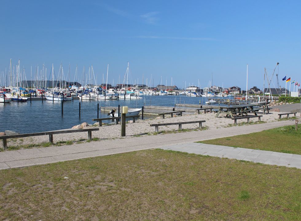View of the large marina in Bogense from the picnic area