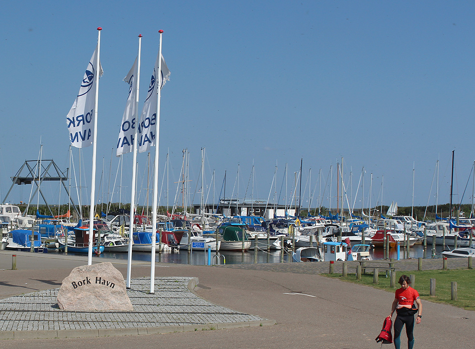 The cosy marina by the surf beach in Bork Havn