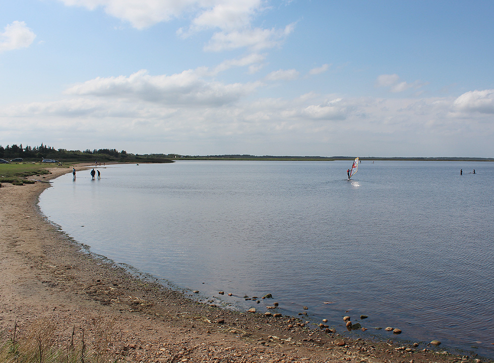 The shore by the holiday home area in Bork Havn