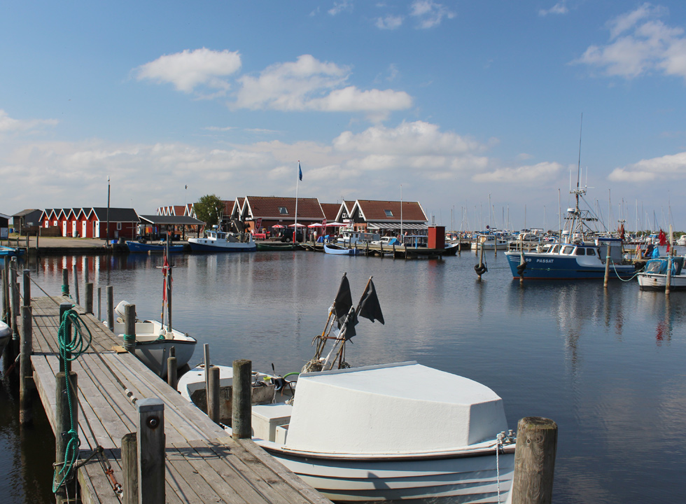Fishing boats, fisherman houses, shops and eateries in Bork Havn