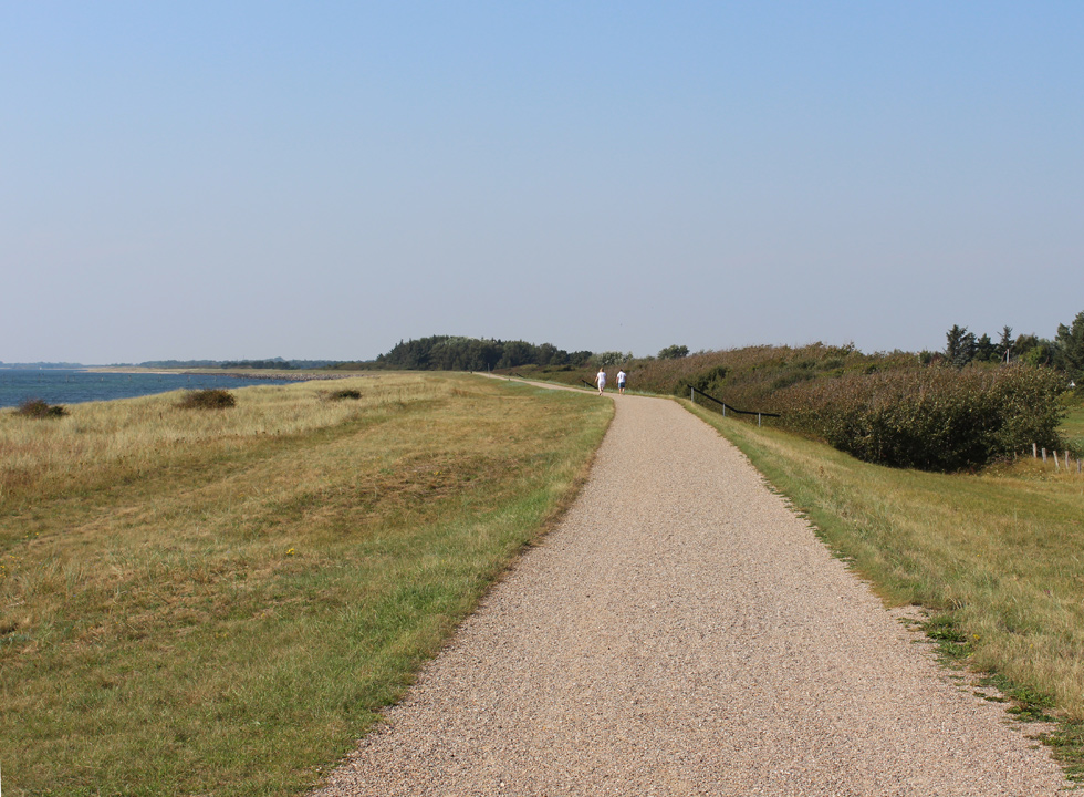 You can walk, run and cycle on the dike path of Lolland, which connects the holiday areas on the south coast