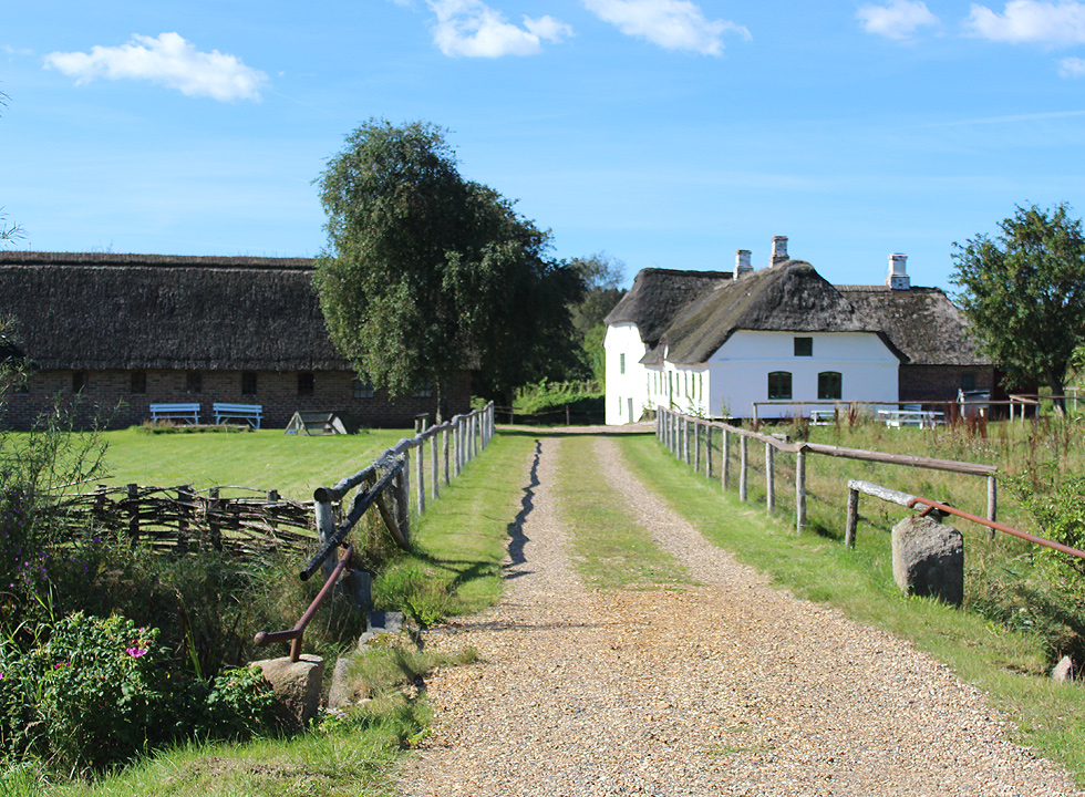 Historic experiences in scenic surroundings await you by the mill Bundsbæk Mølle near Dejbjerg