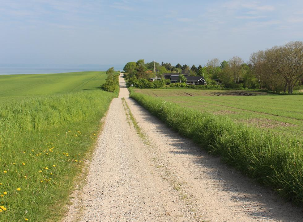 Gravel road, leading to the cosy holiday home area in Dejret
