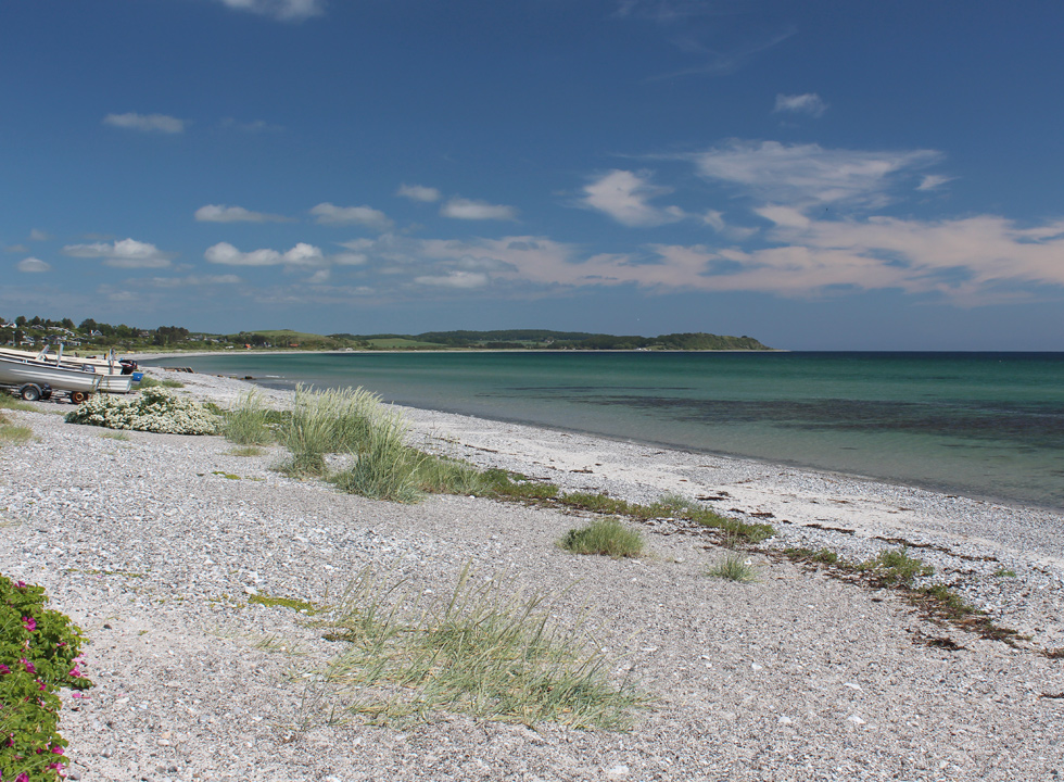 View of the beach of Dråby towards the holiday home area, which is situated close to the water