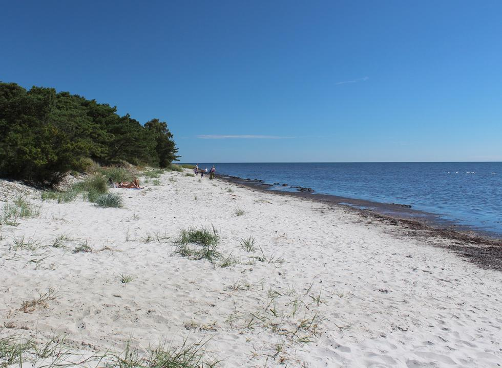 A summer day on the beach by the holiday homes of Dueodde Ferieby