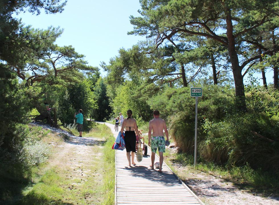 A wooden path leads from the holiday homes and the parking area to the wide sandy beach of Dueodde