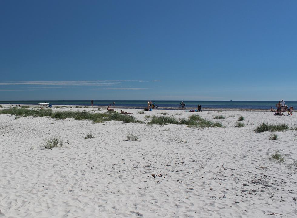 A summer day on the beach of the holiday home area Dueodde