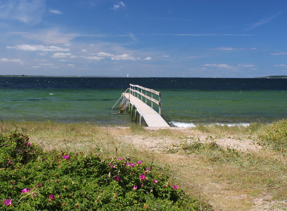 Bathing jetty in the clear water by the beach in the holiday home area Dyreborg