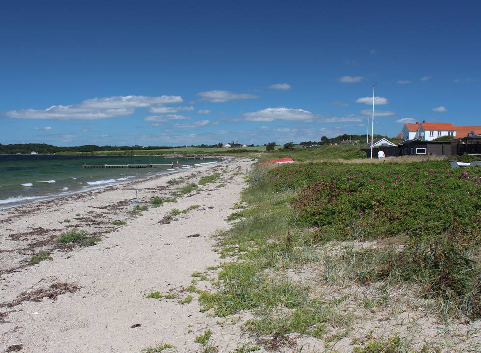 The lovely bathing beach in the holiday area Dyreborg on South Funen