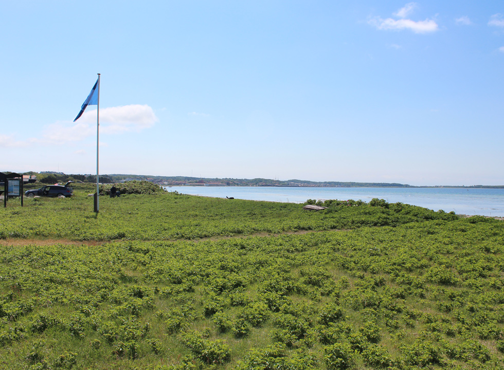 Blue flag by the bathing beach in Ebeltoft
