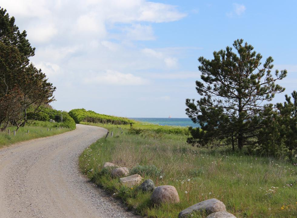 The road, which leads along the shore through the holiday home area in Elsegårde Strand
