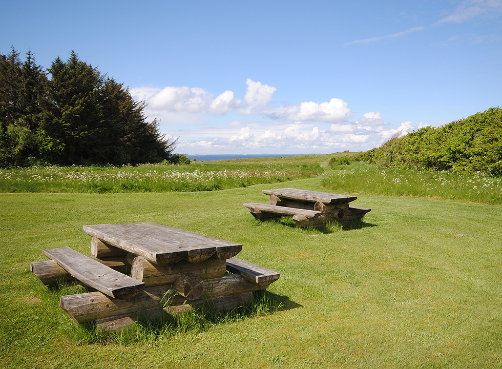 Picnic area in the scenic nature behind the beach in Ertebølle