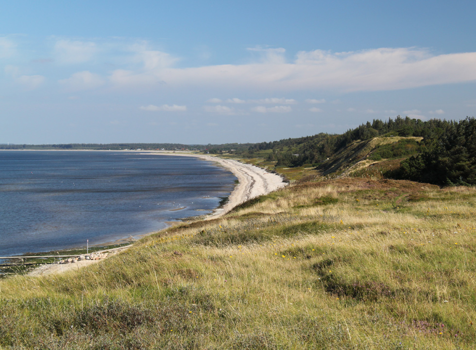 Behind the beach of Ertebølle the landscape is characterized by scenic forest and moor
