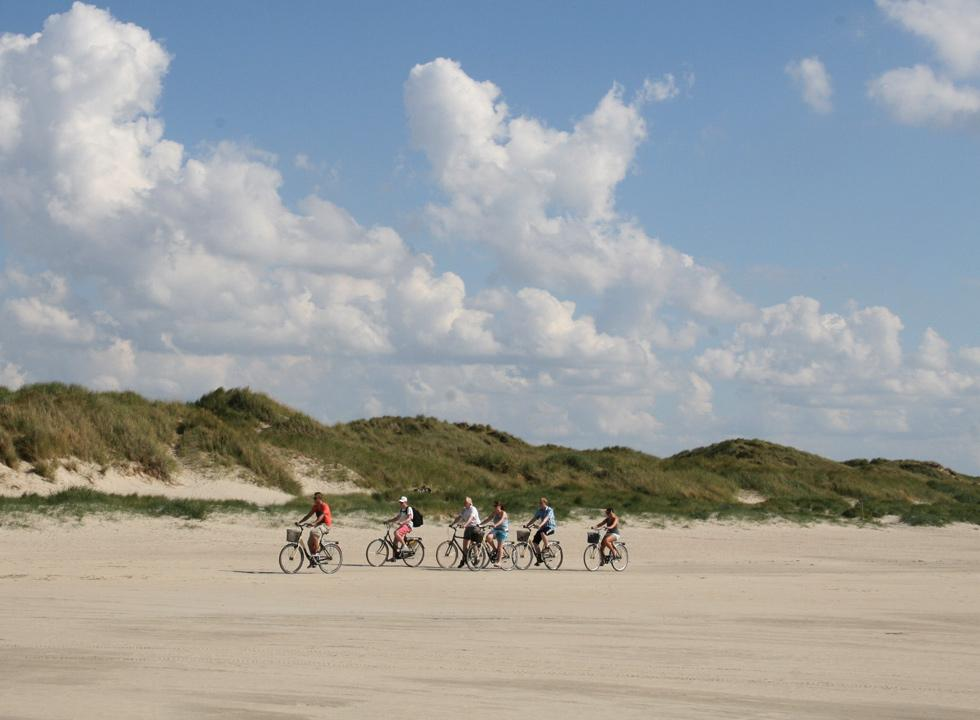 Bicycle trip on the wide sandy beach in Fano Bad