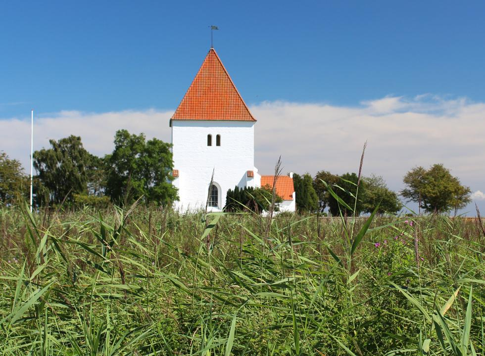 The church Fejø Kirke is situated in green surroundings, right behind the shore