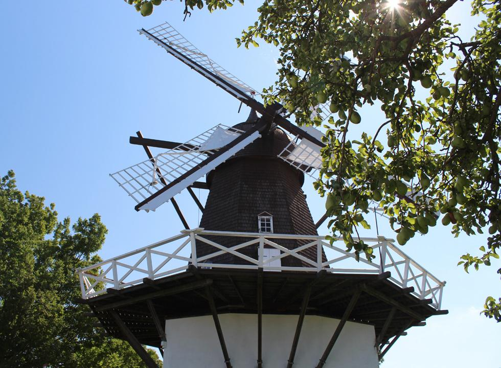 The mill Fejø Mølle in Østerby is one of Fejø's largest attractions