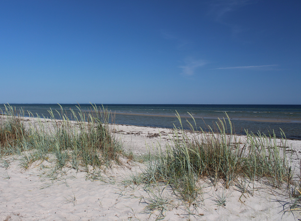 Small dunes behind the bathing beach in the holiday home area Fjellerup Strand