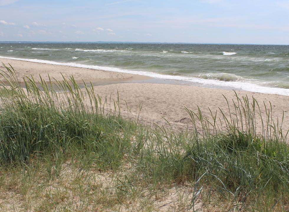 View of the beach and the sea from the small dunes in Flovt