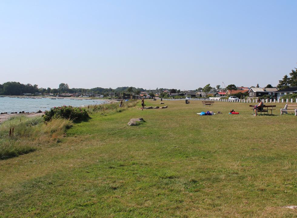 Large grass area behind the beach, where you can relax and sunbathe