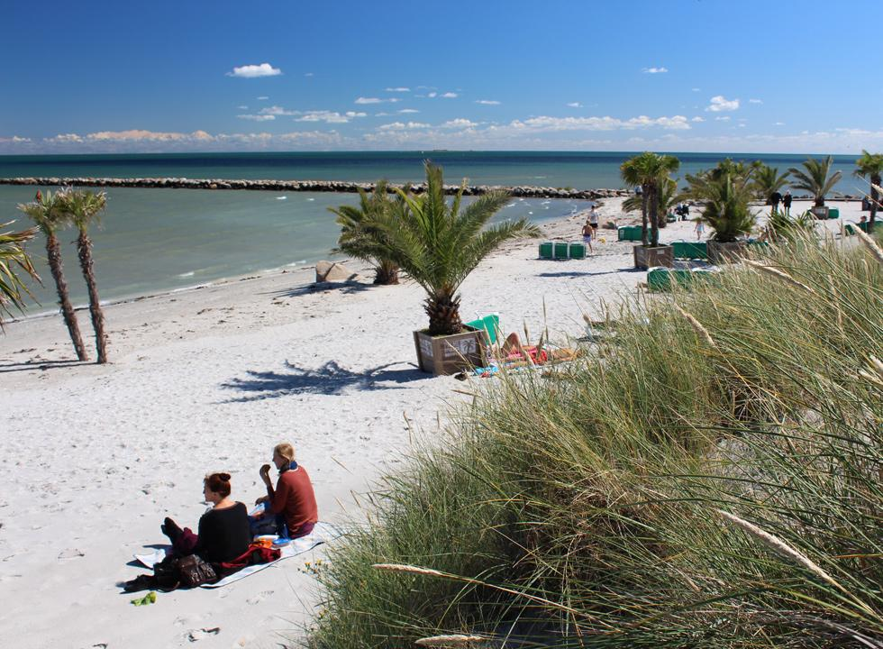 Relaxation and cosy atmosphere on the palm beach in Frederikshavn