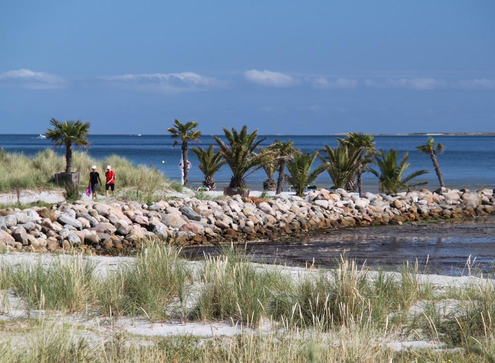 Enjoy the view of the Kattegat from the pier of the palm beach