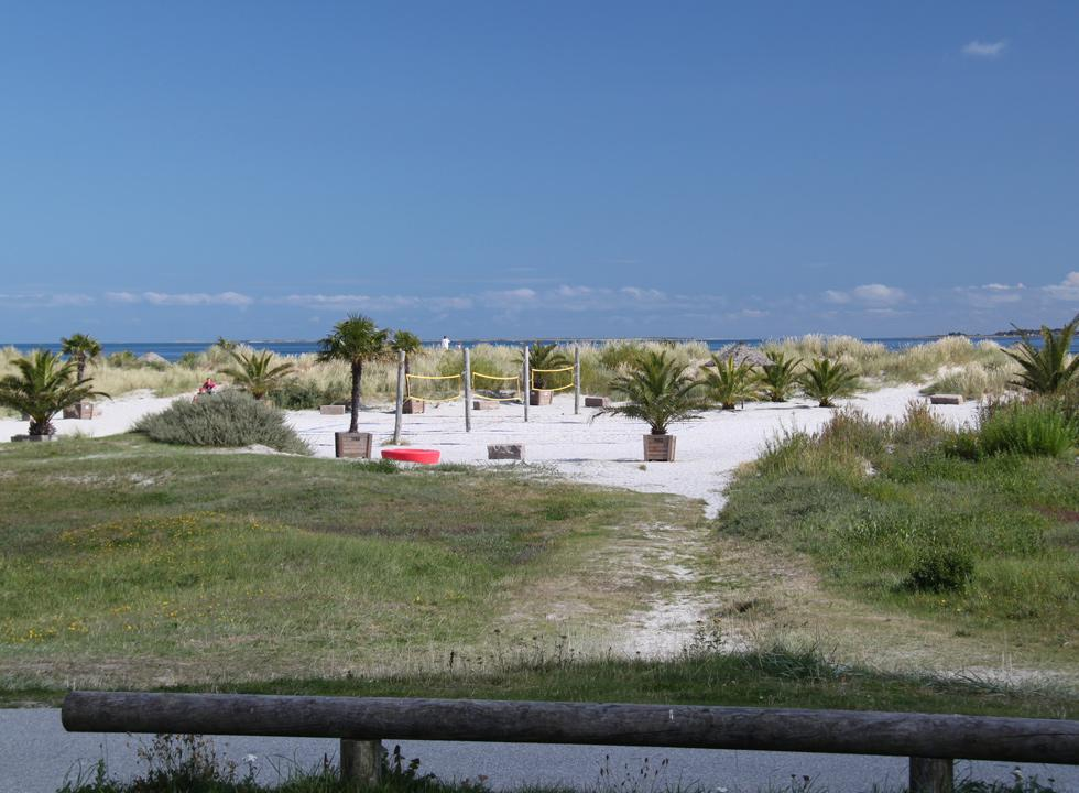 You can also play beach volley on the palm beach in Frederikshavn