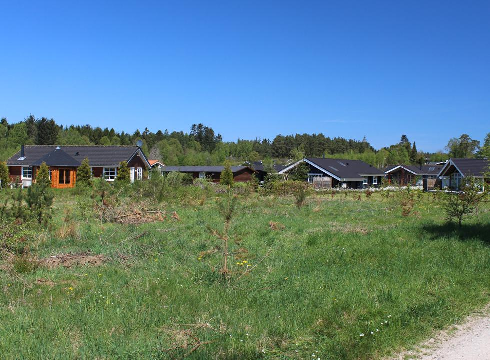 Lovely holiday homes in tranquil green surroundings in the holiday area Fuglslev