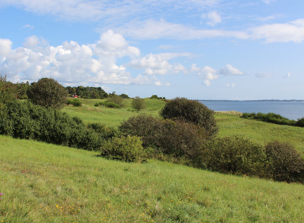 View of the hilly landscape and the bay Ebeltoft Vig from the holiday homes in Fuglsø