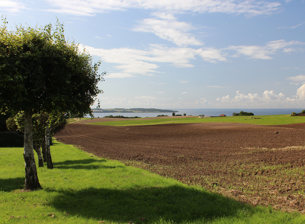 View of the fields and the water behind the holiday homes in Fuglsø