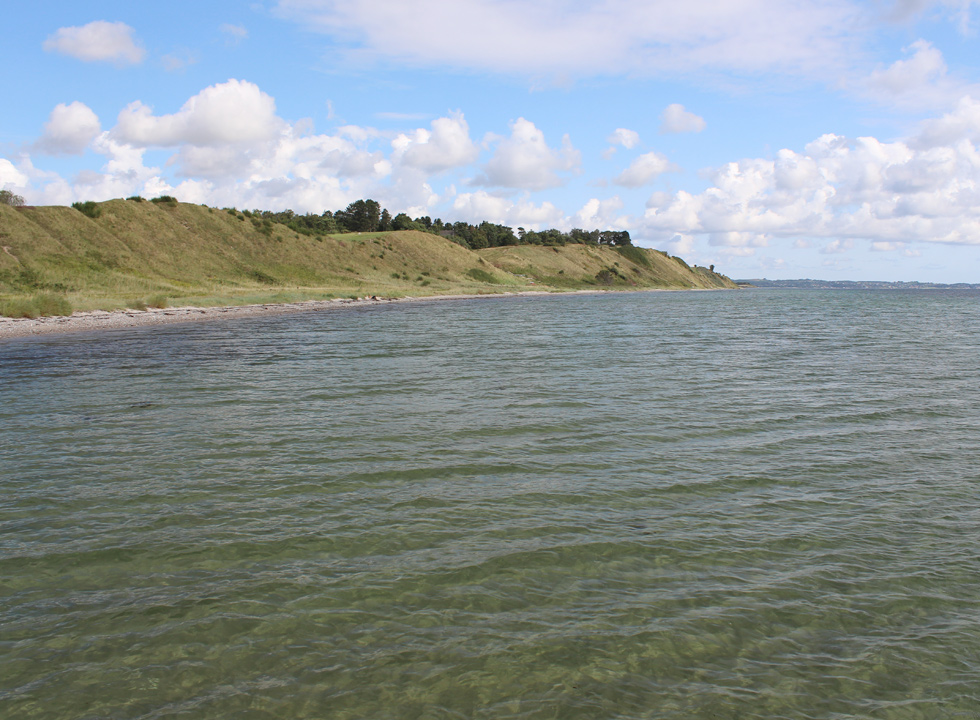 Clear bathing water along the shore, below the holiday homes in Fuglsø