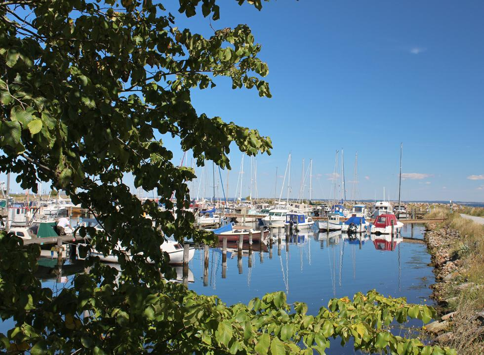 The charming marina in Fynshav is situated next to the beach, Sydstranden
