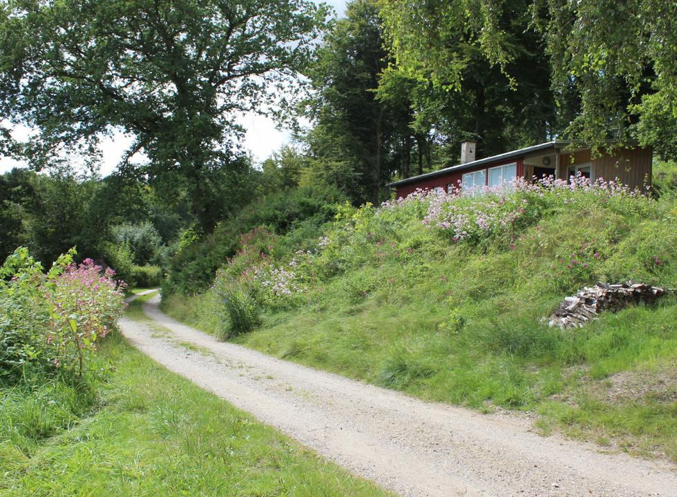 Highly situated holiday home, surrounded by forest and flowers, in Gistrup