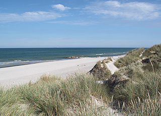 The wide sandy beach with dunes in Gammel Skagen