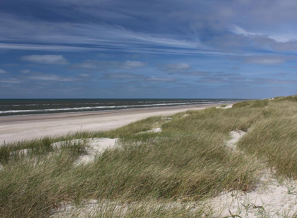 Grærup offers a wide and white sandy beach as far as the eye can see