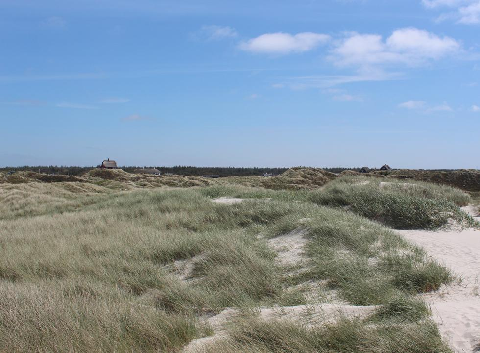 From the elevated holiday homes of Grærup you can enjoy a scenic view of the dune area and the sea