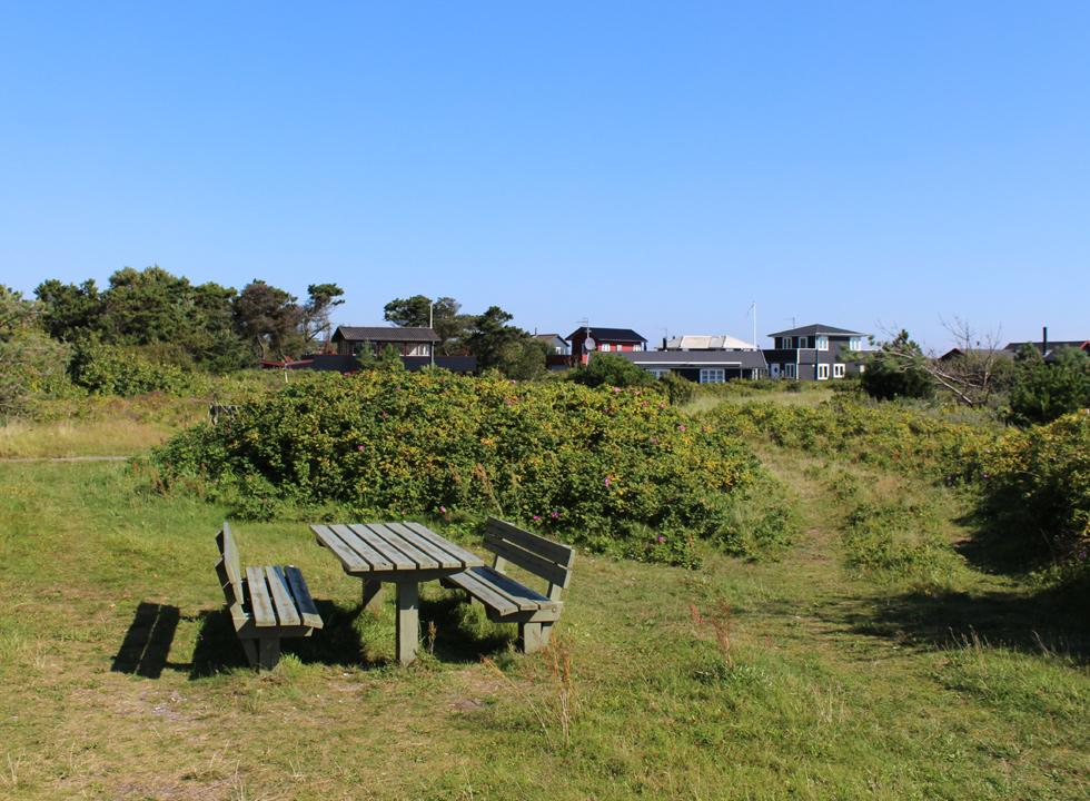 Picnic area behind the beach, between the holiday homes in Grenå Strand