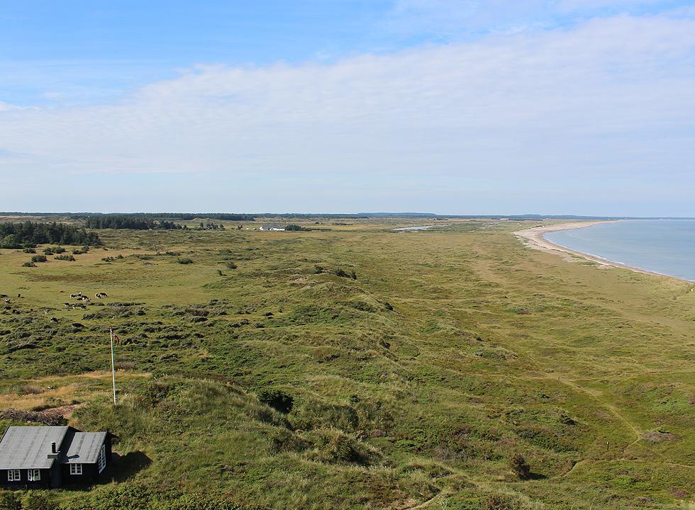 View of Grønne Strand and nature towards south