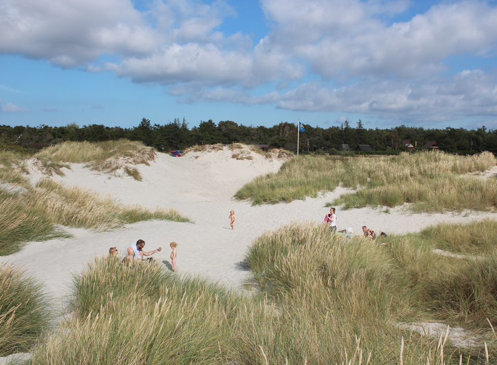 Sheltered hollows in the dunes behind the beach in the holiday home area Gudmindrup Lyng