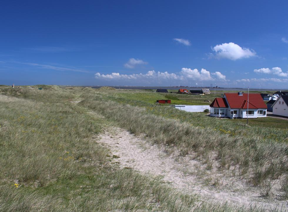 The holiday homes in Harboør are located right behind the dunes of the beach