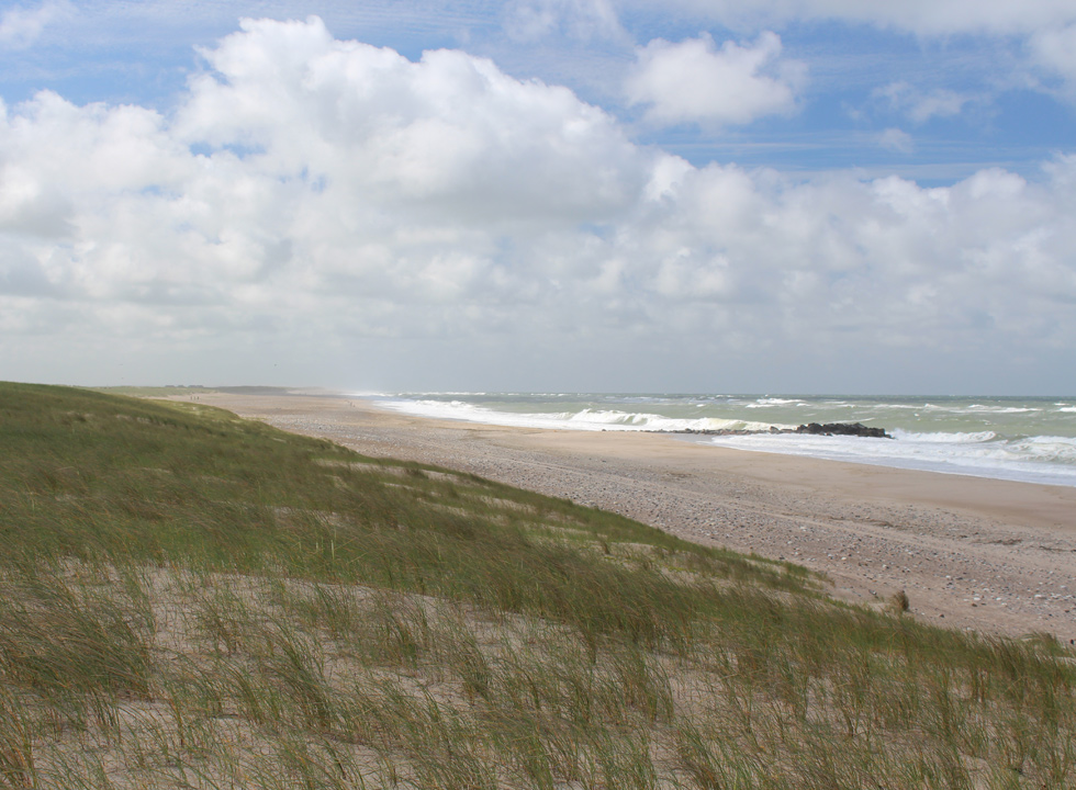 View from the dunes, towards south, of the beach and the North Sea in Harboør