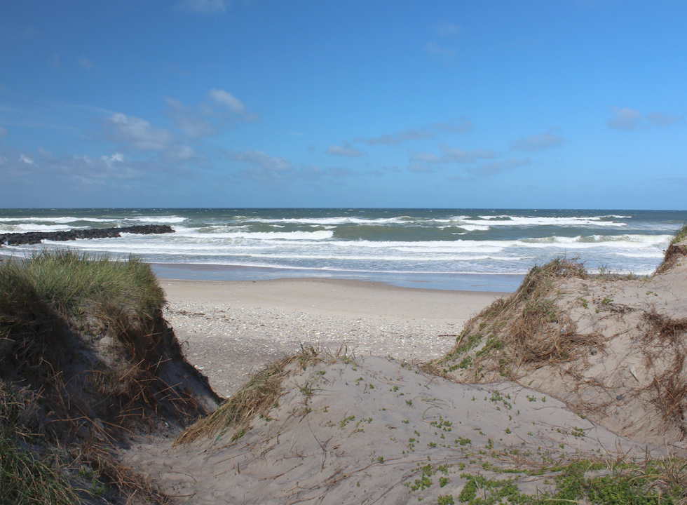 View of the bathing beach in Harboør from the dunes
