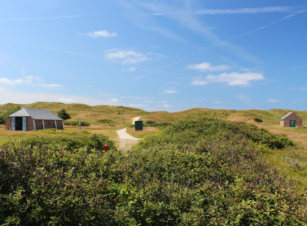 Rescue houses in the dune landscape behind the beach of Haurvig