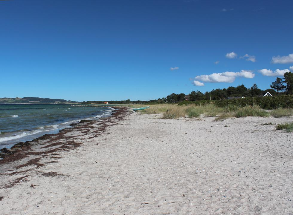 The fine sandy beach between the holiday homes and the water in Havnsø