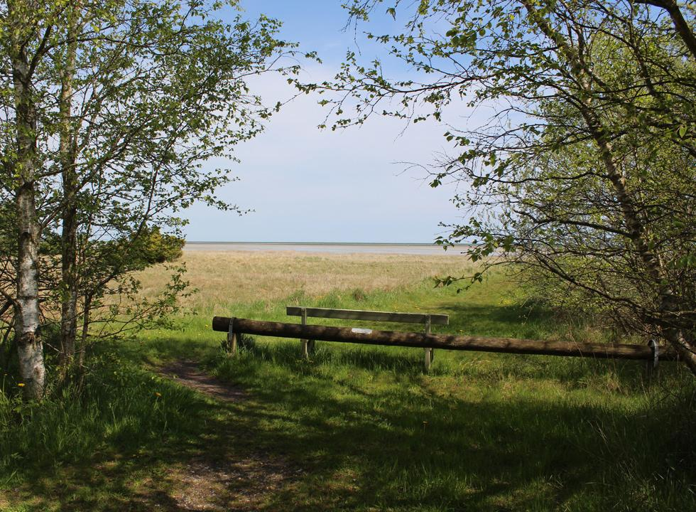 View towards the sea from the holiday home area in Helberskov
