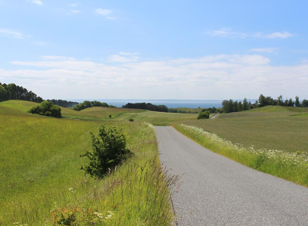 The road winds through the green and hilly landscape on Helgenæs