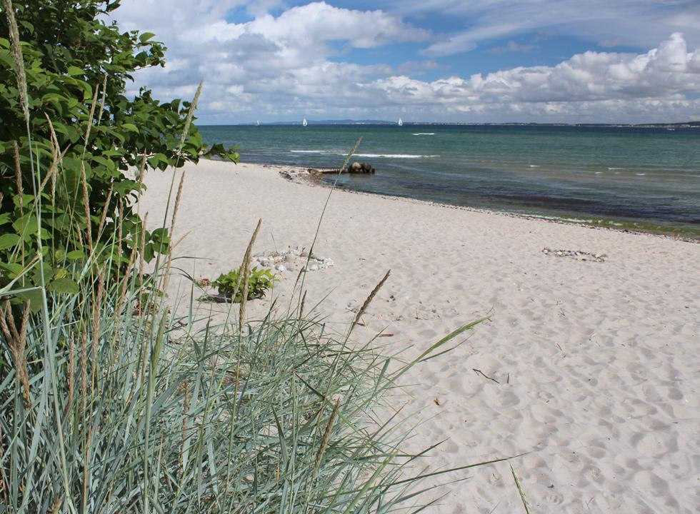 The fine sandy beach by Oresund in the holiday area Hellebæk
