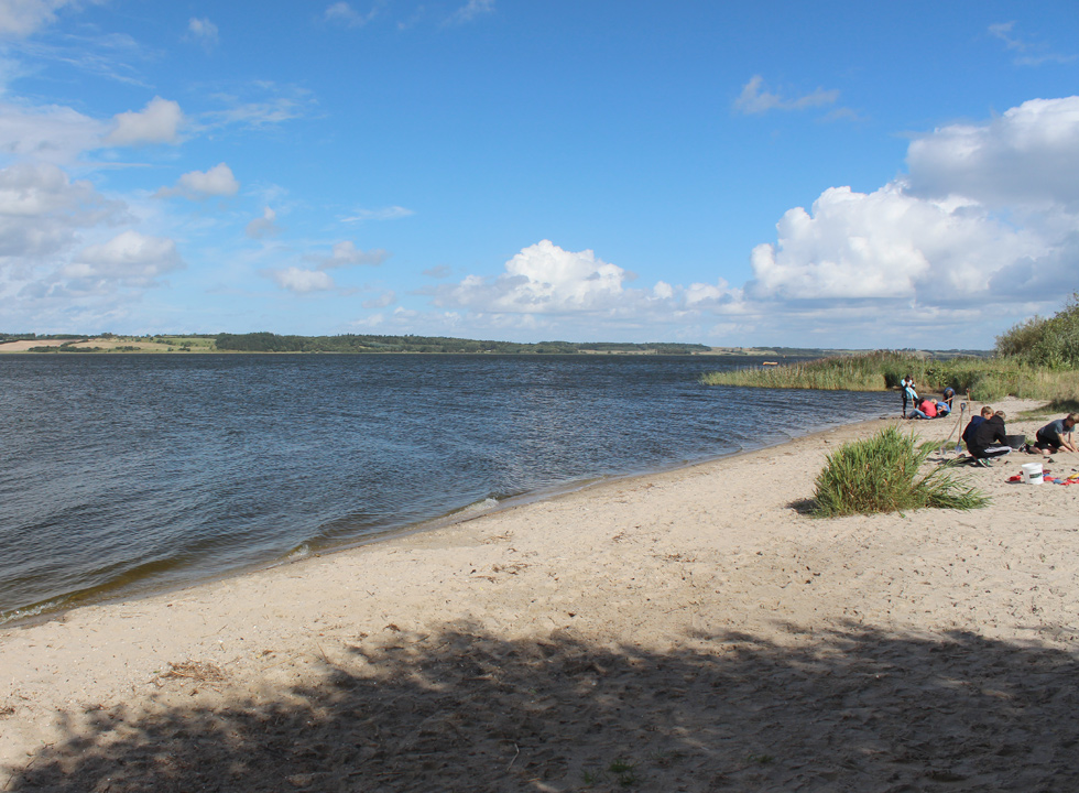 In Hjarbæk you can swim in the bay from a fine sandy beach