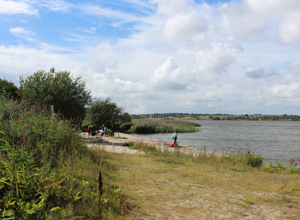 The beach of Hjarbæk and the masts of the marina in the background
